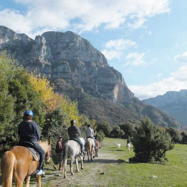 Horse riding in the nature at Zagori